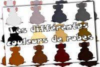 Les différentes couleurs de robes.